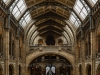 Natural History Museum - London, England, 2016