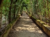 green-alley-in-the-boboli-gardens-florence-italy_23732522935_o