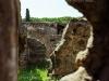pompeii_23792900684_o