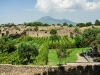 Vinyards (Mount Vesuvius in the background) - Pompeii, Italy 2014
