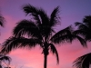 tryp-cayo-coco-colorful-cuban-sunset_19335957471_o